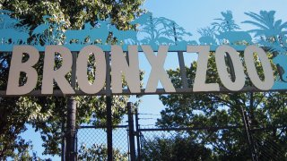 bronx zoo sign1