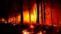 Crisis climática: la pasada década fue la más cálida de la historia