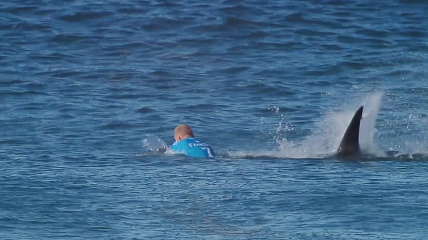 tiburon-ataca-a-surfista