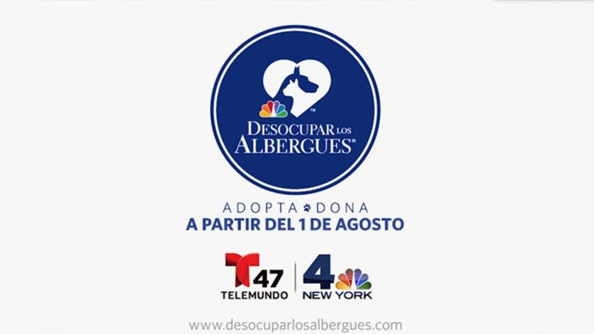 TLMD-desocupar-albergues-st-2020-1