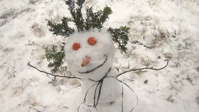 En fotos: primera gran nevada del 2021 en el DMV