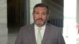 Picture of Texas Senator Ted Cruz