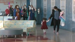 Toddler makes miracle recovery