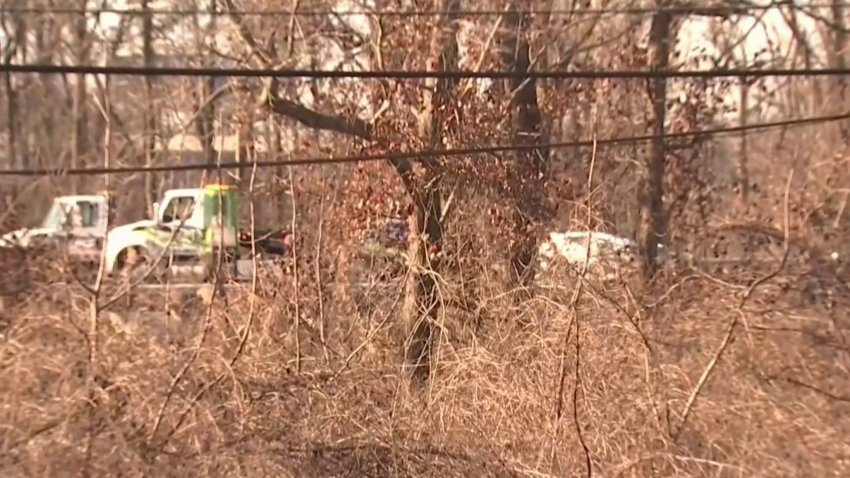route 50 crash scene through trees