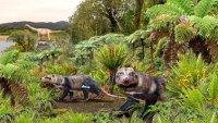 """""""Bestia de cinco dientes"""": descubren fósil de nuevo mamífero de la época de los dinosaurios"""