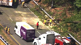 A tree fell on the Capital Beltway on Friday, April 30, 2021.