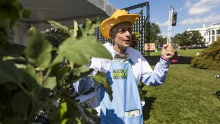 Stephen Ritz, founder of Green Bronx Machine, aims to promote health in the Bronx community.