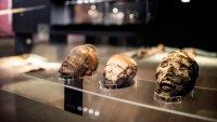 Las momias Chinchorro, las más antiguas del mundo, son declaradas patrimonio de la humanidad
