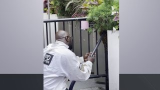 NYPD officer removing bees