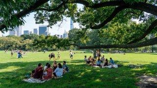 New York's Golden Summer