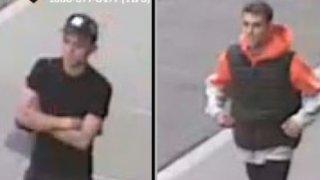 central park suspects