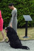 The Duke and Duchess of Sussex in Ireland-Day Two