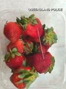 tlmd-fresas-se-extiende-04