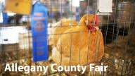 Feria del condado de Allegeny (Maryland) , Julio 13-21
