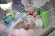 TLMD-recien-nacido-bebe-neonato-incubadora-shutterstock_299132033