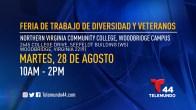Feria de Trabajo de Diversidad y Veteranos del norte de Virginia