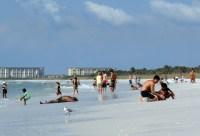 Estos son los destinos con mayores recomendaciones por parte de los turistas en el área de Tampa.