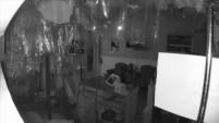 Captado en video: El ladrón se arriesgó a romper el cristal de la puerta principal, pero logró entrar y salir con un bolsillo lleno de...