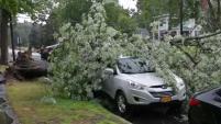 El clima severo de la tarde del martes causó inundaciones repentinas y árboles caídos en algunas áreas de Nueva Inglaterra