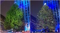 Cortan el árbol de Navidad que iluminará la plaza del Rockefeller Center de Nueva York en el 2016.