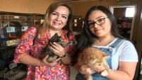 """Estas mascotas están a la espera de una familia que les brinde el amor y la protección que tanto necesitan. ¡Únete a nuestra campaña """"Desocupar los Albergues"""" y..."""