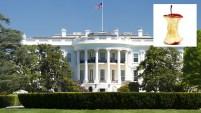 Lo que parecía una leve infracción tuvo consecuencias inesperadas este sábado en la tarde en Washington, D.C.