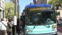 Reporte: autobuses de la MTA tan lentos como tortugas . Noticias en tiempo real