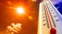 Vigilancia de calor excesivo a la espera de lo peor. Noticias en tiempo real