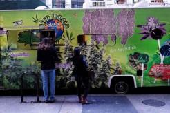 Promueven dulces de marihuana en EEUU