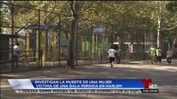 Abuela muere baleada en Harlem
