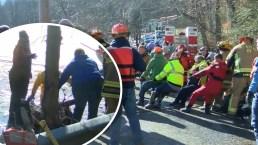 En video: rescatan caballos que cayeron en un lago congelado