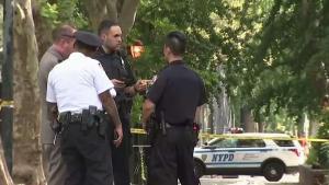 Muere hispano apuñalado en parque de Manhattan