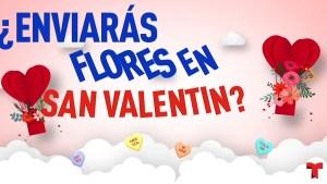 Antes de comprar flores para San Valentín