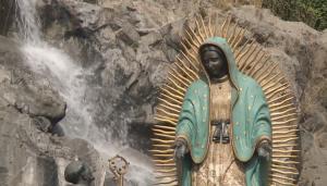 Sigue aquí las procesiones de la Virgen de Guadalupe