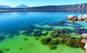 México en imágenes: La belleza de sus lagos, flores y lugar de dioses