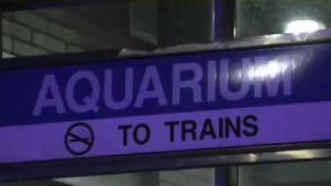 Arrestan joven por balacera en estación Aquarium
