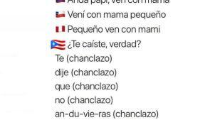 """El boricua es diferente y los memes de """"banderitas"""" lo confirman"""