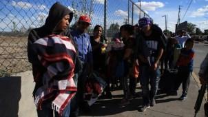 Ola de 700 busca cruzar a EEUU para solicitar asilo