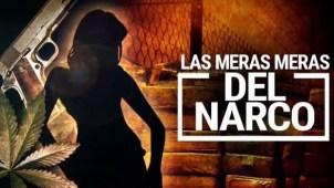 Las meras, meras del narco: mujeres que lo arriesgan todo