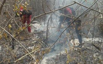 Bolivia: casi 2,000 familias afectadas por incendios