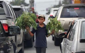 El 13% de los niños de Quisqueya realiza algún tipo de trabajo