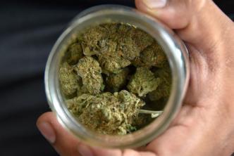 Bodegueros de NY exigen licencias para la venta de cannabis
