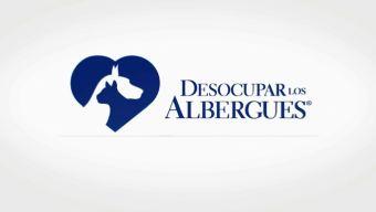 Quinta campaña anual Desocupar los Albergues