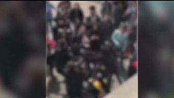 10 arrestados tras monumental pelea en escuela