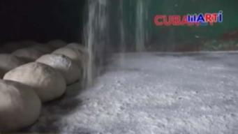 Argentina quiere vender harina de trigo en Cuba