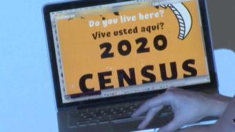 Artistas locales recalcan la importancia del censo