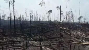 Bolivianos en el DMV unen fuerzas para ayudar tras incendios forestales