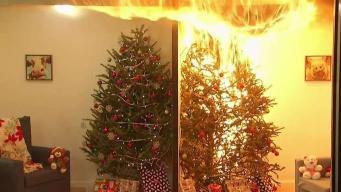Los peligros de las decoraciones navideñas: cómo protegerse