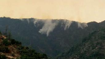 Bomberos locales combaten incendio cerca de Yosemite