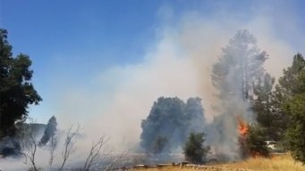 Planean quemas prescritas en las montañas de Cuyamaca